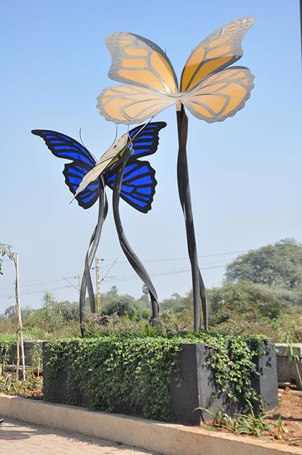 Palava's Butterfly Art
